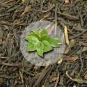 Herbata Zielona Japan Sencha