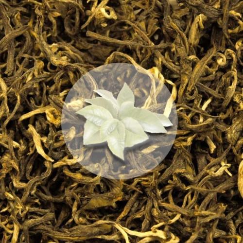 Herbata Biała Fujian White