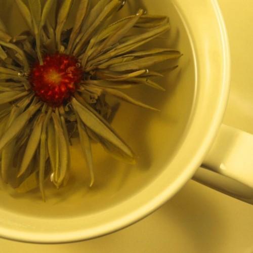 Herbata Biała Truskawka Lichee /1szt