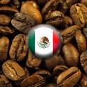 Kawa Arabica Meksyk Maragogype