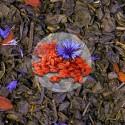 Herbata Zielona Złoto Tybetu