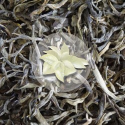 Herbata Biała White Downy
