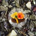 Herbata Zielona Cytrusowa